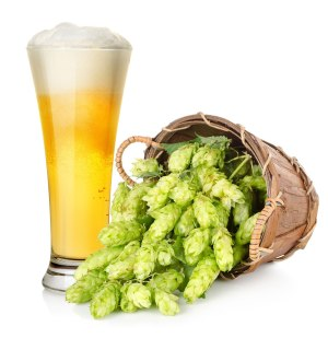 Beer and hop in basket