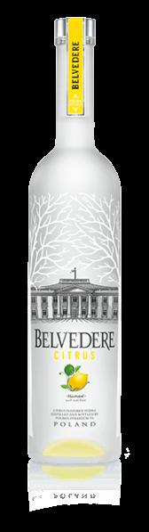 belvedere-citrus-vodka