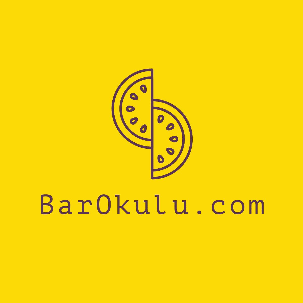 www.barokulu.com